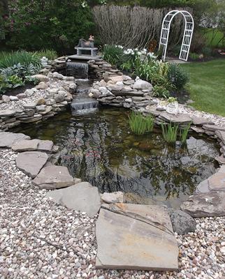 8 x 10 ft skimmer pro pond k and a ponds ny